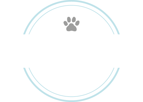 Paws in Touch